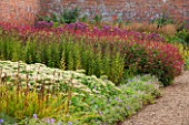 LAMPORT HALL, NORTHAMPTONSHIRE: BORDER IN THE WALLED KITCHEN GARDEN - CUTTING GARDEN WITH SEDUMS, PERSICARIA AND JOE PYE WEED - FLOWERS, AUGUST, SUMMER