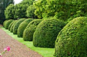 LAMPORT HALL, NORTHAMPTONSHIRE: VIEW ALONG GRAVEL PATH WITH BOX DOMES. SUMMER, ENGLISH GARDEN, AUGUST, FORMAL, TOPIARY, CLIPPED