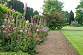LAMPORT HALL, NORTHAMPTONSHIRE: BORDER BESIDE LAWN WITH HOLLYHOCKS - GRAVEL PATH, CLASSIC, FORMAL, ENGLISH GARDEN, FLOWERS, AUGUST, SUMMER