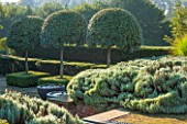 SURREY GARDEN DESIGNED BY ANTHONY PAUL: VIEW ACROSS TERRACE TO COUNTRYSIDE BEYOND WITH PONDS IN CONTAINERS - PORTUGAL LAUREL - COUNTRY GARDEN, SUMMER, CLIPPED, MOPHEAD, PATTERN