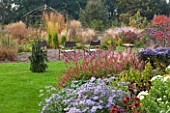 ELLICAR GARDENS, YORKSHIRE - DESIGNER SARAH MURCH - COUNTRY GARDEN, AUTUMN - BORDER WITH ASTER FRIKARTII MONCH, PERSICARIA AMPLEXICAULIS ATROSANGUINEA, CHAIRS AND WOODEN GAZEBO