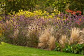 ELLICAR GARDENS, NOTTINGHAMSHIRE: HERBACEOUS BORDER BY LAWN WITH STIPA TENUISSIMA, VERBENA BONARIENSIS AND HELIANTHUS LEMON QUEEN. OCTOBER, AUTUMN, FALL, FLOWERS, COUNTRY GARDEN