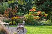 ELLICAR GARDENS, NOTTINGHAMSHIRE: LAWN AND BEACH WITH DECK CHAIR - BORDER WITH RHUS TYPHINA AND RUDBECKIA - AUTUMN, FALL, OCTOBER, COUNTRY GARDEN