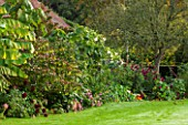 HOLE PARK, KENT: TROPICAL, EXOTIC BORDER BESIDE HOUSE WITH DAHLIAS AND WHITE DATURA - COUNTRY GARDEN, CLASSIC, FALL, AUTUMN, OCTOBER