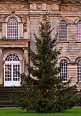 CASTLE HOWARD, YORKSHIRE: CHRISTMAS - CHRISTMAS TREE IN FRONT OF THE HOUSE ON LAWN WITH LIGHTS - WINTER, DECORATION, DECORATIVE, NOVEMBER