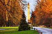 CASTLE HOWARD, YORKSHIRE: CHRISTMAS - CHRISTMAS TREE IN FRONT OF THE OBELISK ON LAWN WITH LIGHTS - WINTER, DECORATION, DECORATIVE, NOVEMBER