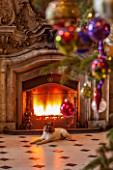 CASTLE HOWARD, YORKSHIRE: CHRISTMAS - DEE THE DOG IN THE GREAT HALL BESIDE THE FIREPLACE - DECORATION, DECORATIVE, ORNAMENT, WINTER, BAUBLES, FESTIVE, ANIMAL, PET