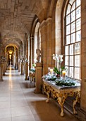 CASTLE HOWARD, YORKSHIRE: CHRISTMAS - THE ANTIQUE PASSAGE DECORATED AT CHRISTMAS WITH WHITE ORCHIDS, CANDLES AND WREATHS - DECORATIVE, ORNAMENT, FESTIVE, WINTER, NOVEMBER