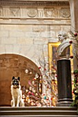 CASTLE HOWARD, YORKSHIRE: CHRISTMAS - DEE THE DOG ON THE CHINA LANDING DECORATED FOR CHRISTMAS WITH A CHRISTMAS TREE - DECORATIVE, ORNAMENT, WINTER, NOVEMBER