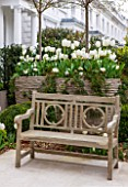 DESIGNER STEPHEN WOODHAMS, LONDON: FORMAL TOWN GARDEN IN SPRING -CONTAINERS AND WOODEN BENCH / SEAT, WHITE PLANTING OF TULIP PURISSIMA, TULIP CARDINAL MINDSZNTY, TULIP CLEARWATER
