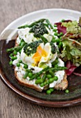 WHICHFORD POTTERY, WARWICKSHIRE: BRUSCHETTA  - ASPARAGUS, PEA, MINT, TARRAGON, RICOTTA, LOCAL POACHED EGGS, WILD GARLIC DRIZZLE - SERVED ON WHICHFORD POTTERY PLATE IN THE CAFE