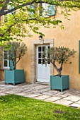 LA JEG, PROVENCE, FRANCE: DESIGNER ANTHONY PAUL - COURTYARD, HOUSE, LAWN, PAVING, STONE, PATH, VERSAILLES CONTAINER, OLIVE, TREES, SPRING, MEDITERRANEAN