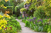 BRYANS GROUND, HEREFORDSHIRE: THE BACK OF THE HOUSE - PATH PAST AQUILEGIAS AND WISTERIA. - COUNTRY GARDEN, TERRACE, JUNE, SUMMER
