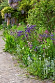 BRYANS GROUND, HEREFORDSHIRE: THE TERRACE BEHIND THE HOUSE WITH BORDER OF AQUILEGIAS, STACHYS AND FENNEL - PATIO, COUNTRY GARDEN, SPRING, MAY, PINK, BLUE, FLOWERS