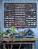 BRYANS GROUND, HEREFORDSHIRE: BLUE WALL WITH WOODEN TABLE, SLATE BIRD BOXES AND PORCELAIN FRAGMENTS IN PRINTERS TRAYS. GARDEN ORNAMENT, DECORATIVE, DECORATION