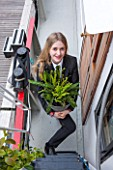 HOPE SHARP STORY, CHELSEA FLOWER SHOW 2016: HOPE SHARPS FERN GARDEN ON HER HOUSE BOAT ON CADOGAN PIER ON THE THAMES