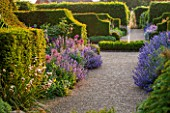 ARUNDEL CASTLE GARDENS, WEST SUSSEX: GRAVEL PATH, YEW HEDGES, NEPETA SIX HILLS GIANT AND ALLIUMS - BULB, BULBS, FLOWERS, ENGLISH GARDEN, FOUNTAIN, BORDER, BORDERS, HEDGE, HEDGING