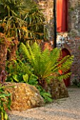 ARUNDEL CASTLE GARDENS, WEST SUSSEX: GRAVEL, ROCKS, DICKSONIA ANTARCTICA, WALL, RED, DOOR, TREE FERN, SUMMER, COLLECTOR EARLS GARDEN