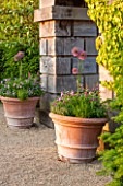 ARUNDEL CASTLE GARDENS, WEST SUSSEX: COLLECTOR EARLS GARDEN DESIGNED BY JULIAN AND ISABEL BANNERMAN. TERRACOTTA CONTAINERS PLANTED WITH ALLIUMS