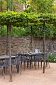 PRIVATE GARDEN LONDON DESIGNED BY LUCY WILLCOX AND ANA SANCHEZ MARTIN: TOWN GARDEN - PATIIO AREA WITH PLEACHED TREE CANOPY / PERGOLA, TABLE, CHAIRS, WALL, SUMMER, FORMAL