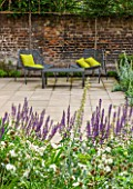 PRIVATE GARDEN LONDON DESIGNED BY LUCY WILLCOX AND ANA SANCHEZ MARTIN:PATIO WITH SALVIA, METAL CHAIRS WITH LIME GREEN CUSHIONS, WALL, PLEACHED HORNBEAM, SUMMER, FORMAL, TOWN