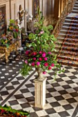 CHATSWORTH HOUSE, DERBYSHIRE: FLORABUNDANCE - THE PAINTED HALL WITH TOWERING FLORAL DISPLAY WITH PEONIES AND ANGELICA ON STONE PLINTH. INTERIOR, GRAND, OPULENT, STAIRCASE