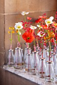 CHATSWORTH HOUSE,DERBYSHIRE:FLORABUNDANCE-A FIELD FULL OF POPPIES.POPPIES AND PRIMULAS IN OLD-FASHIONED SCHOOL MILK BOTTLES PAY HOMAGE TO THE LANDSCAPE CREATED THREE CENTURIES AGO