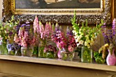 CHATSWORTH HOUSE,DERBYSHIRE:FLORABUNDANCE-THE NORTH ENTRANCE; SHELF-SUMMER FLOWERS PICKED FROM THE GARDEN IN PURPLE/PINK.JARS OF LUPINS,ASTRANTIA,CAMPANULA,DIGITALIS,MINT,MILLET