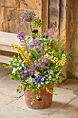 CHATSWORTH HOUSE, DERBYSHIRE: FLORABUNDANCE-FLORAS TEMPLE; TERRACOTTA POT WITH YELLOW LUPINS, MOCK ORANGE, ALLIUMS AND CORNFLOWERS. DISPLAY, FLORAL,ARRANGEMENT