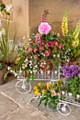 CHATSWORTH HOUSE,DERBYSHIRE: FLORABUNDANCE-FLORAS TEMPLE- BEAUTIFUL FLORAL DISPLAYS AND ARRANGEMENTS OF SUMMER FLOWERS IN MINI WHITE METAL WHEELBARROWS. YELLOW LUPINS, ALSTROMERIA