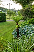 GLYNDEBOURNE, EAST SUSSEX: TREE FERNS AND HOSTAS IN THE EXOTIC BOURNE GARDEN WITH LAWN - GREEN, TROPICAL, DICKSONIA ANTARCTICA