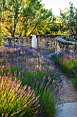 LA JEG, PROVENCE, FRANCE: DESIGNER ANTHONY PAUL - STONE WALL AND LAVENDER - LAVENDULA GROSSO WITH SCULPTURE - SUMMER, SUNRISE, PURPLE, ART, JUNE, SUMMER