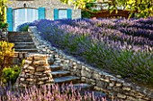 LA JEG, PROVENCE, FRANCE: DESIGNER ANTHONY PAUL - STONE PATH TO HOUSE IN JUNE - ROWS OF PURPLE LAVENDER - LAVENDULA GROSSO. SUMMER, BLUE, SCENT, SCENTED, FRAGRANT, STEPS, WALL