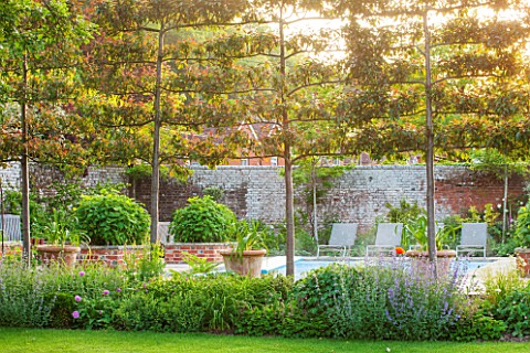 THE_COACH_HOUSE_SURREY_SWIMMING_POOL_LINED_WITH_ESPALIERED_MALUS_RUDOLPH__RAISED_BRICK_BEDS_WITH_HYD
