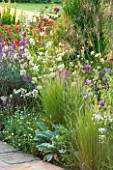 THE COACH HOUSE, SURREY: PERENNIAL BORDER IN SUMMER WITH STIPA TENUISSIMA,STACHYS BYZANTINE BIG EARS,ALLIUM COWANII,GERANIUM ORION & LUZULA NIVEA. PLANT COMBINATION.