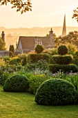 GREYHOUNDS, BURFORD, OXFORDSHIRE: DAWN LIGHT ON COTTAGE GARDEN BORDER WITH YEW TOPIARY AND BOX DOMES. INFORMAL PLANTING, CLASSIC, SUMMER.
