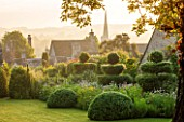 GREYHOUNDS, BURFORD, OXFORDSHIRE: DAWN LIGHT ON COTTAGE STYLE BORDER WITH YEW TOPIARY AND BOX DOMES. SUMMER GARDEN, INFORMAL PLANTING