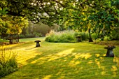 GREYHOUNDS, BURFORD, OXFORDSHIRE: DAWN LIGHT FILTERS THROUGH THE TREES IN THE ORCHARD. WALNUT AND MULBERRY TREES. WITH STADDLE STONES. PEACE, SERENITY, RELAXING, SUMMER.
