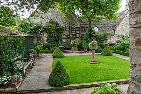 RADFORDSBURFORD_FORMAL_AREA_OF_GARDEN_WITH_LAWN_AND_BOX_PYRAMIDSSTONE_PATH_ROSA_MME_ALFRED_CARRIEREL
