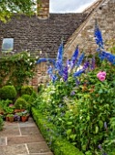 RADFORDS, BURFORD, OXFORDSHIRE:BORDER WITH ROSES AND DELPHINIUMS.BOX TOPIARY IN CONTAINERS AND STONE PATH. SUMMER, COTTAGE-STYLE GARDEN.PINK CLIMBING ROSE-ROSA MME ALFRED CARRIERE