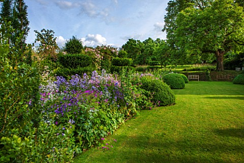 GREYHOUNDSBURFORDCOUNTRY_GARDENLAWN__COTTAGE_BORDER_WITH_VALERIANA_OFFICINALIS_CAMPANULA_VARS__ERYNG