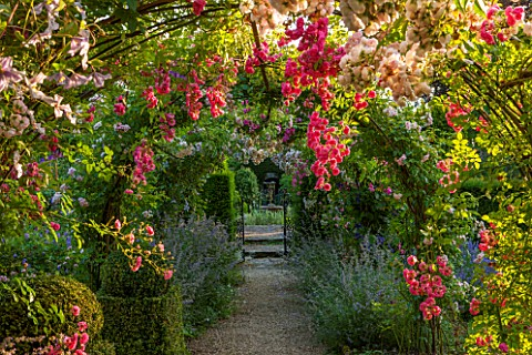 EASTLEACH_HOUSE_GLOUCESTERSHIRE_WALLED_GARDEN_GRAVEL_PATH_WITH_ARCH_NEPETA_SIX_HILLS_GIANT_ROSA_PRIN