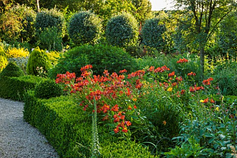 EASTLEACH_HOUSE_GLOUCESTERSHIRE_RED_BORDER__BOX_EDGED_BED_WITH_ALSTROEMERIA_VERBASCUM_AND_SORBUS_ARI