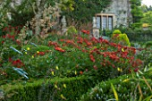 EASTLEACH HOUSE, GLOUCESTERSHIRE: RED BORDER - BOX EDGED BED WITH ALSTROEMERIA, MACLEAYA, EVENING PRIMROSE. FLOWERS, FLOWERING, SUMMER, ENGLISH, GARDEN