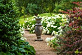 BELMONT HOUSE, SUSSEX - DESIGN ANTHONY PAUL: SUNDIAL, HYDRANGEA ARBORESCENS ANNABELLE, WHITE FLOWERS, FLOWERING, SHRUBS, BLOOMS, BLOOMING