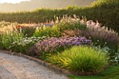 HAUSER & WIRTH, SOMERSET: THE OUDOLF FIELD, DURSLADE FARM - NEW PERENNIAL BORDERS BY PIET OUDOLF - SESLERIA AUTUMNALIS, ALLIUM SUMMER BEAUTY, LYSIMACHIA EPHEMERUM. SUNRISE