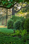 MORTON HALL GARDENS, WORCESTERSHIRE: VIEW OUT TO PARKLAND AT SUNRISE - TREES, LAWN, SUNLIGHT, CLASSIC, GARDEN, COUNTRY, ENGLISH, CHESTNUT TREE, FERNS, STONE, BENCH