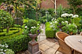 THE OLD BAKEHOUSE, SHERE, SURREY: SMALL TOWN GARDEN, PATH, BOX  BALLS, GREEN, FORMAL, AGAPANTHUS AFRICANUS ALBUS, WHITE DAHLIA, TABLE, CHAIRS, CONTAINER