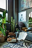 ABIGAIL AHERN HOUSE, LONDON: THE LIVING ROOM - ZEBRA RUG, DARK, INTERIOR, SITTING ROOM, FAUX CACTUS, LUIS HIDE BUTTERFLY CHAIR, SHAGGY PALM LAMP DARK