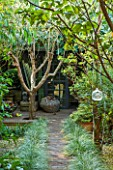 ABIGAIL AHERN HOUSE, LONDON: TOWN GARDEN WITH FAUX WOODEN PATH TO CABIN TYPE SHED, FAUX CACTUS, LATE SUMMER, WOODLAND